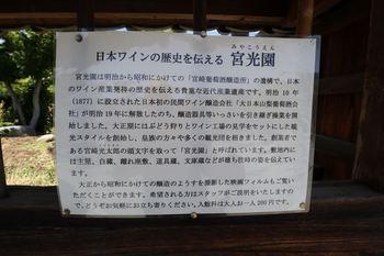 IMG_0680_R.JPG