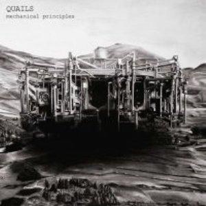 Quails - Mechanical Principles - 2016.jpg